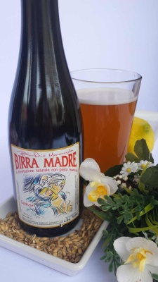 BIRRA MADRE gazeuse cl 37,5 in stile Sour