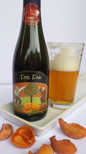 FOR FAN cl 37,5 - Birrificio Loverbeer - Birra artigianale in stile Sour